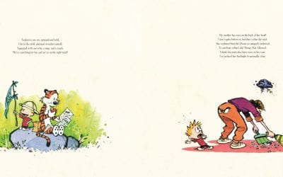 The Complete Calvin and Hobbes Box Set Review