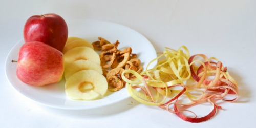 Apple Drying Experiment for Kids