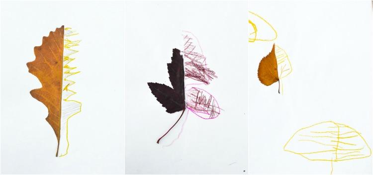 Autumn Leaf Art Prompts: Children's drawings.