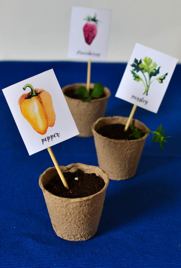 Prepare for a new gardening season with these free printable watercolour garden markers!