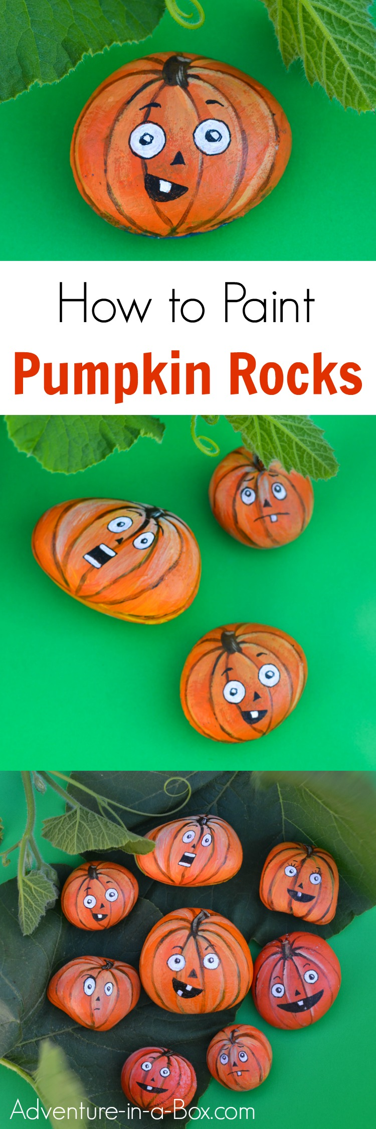 painted pumpkin rock craft painted o lantern pumpkin rocks adventure in a box 5060