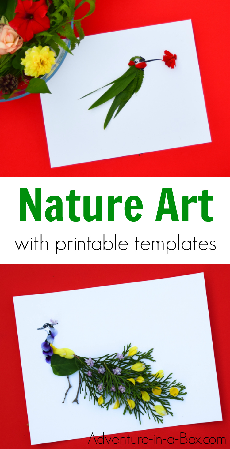 Finish the ink drawings of birds with natural materials. Creative summer craft for artists of all ages! Collaborate with nature and create gorgeous nature art. #steam #nature #natureart #artsandcrafts #kidscrafts