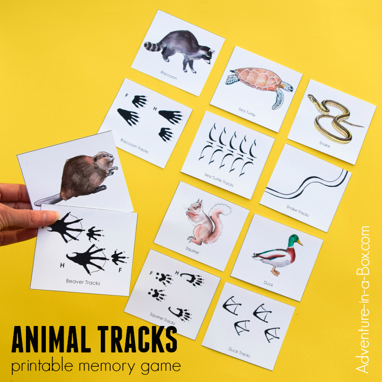 Kids will love to play and learn from this printable educational matching game, which teaches how to match animals with their tracks and where to find them!