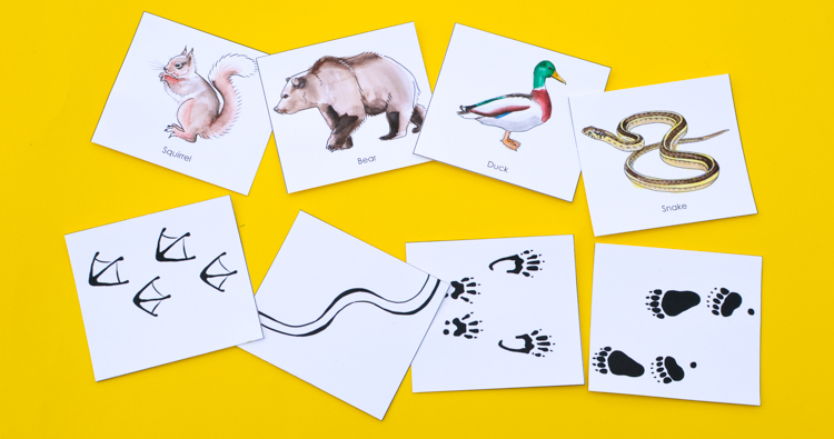 Animal Tracks: Printable Nature Game for Kids