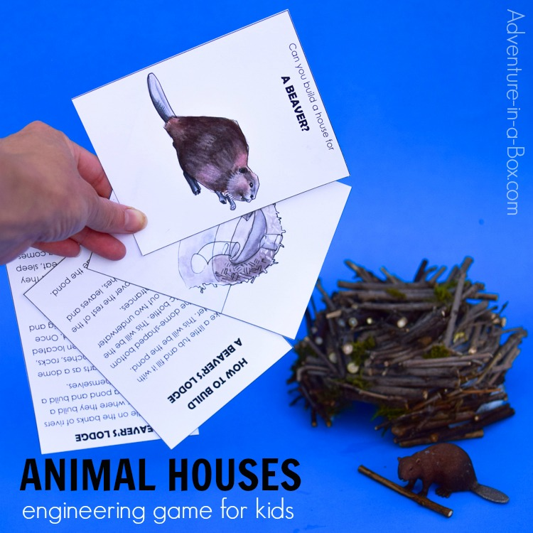 Using this nature-inspired engineering game for kids, you will learn about ten animals and the houses they build, then complete the engineering challenges and build your own versions of these amazing dwellings!