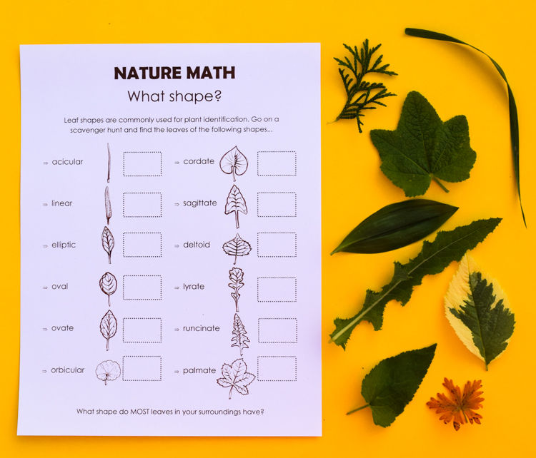 photograph relating to Nature Scavenger Hunt List Printable named Character Math Scavenger Hunt for Children: 4 Printable Lists