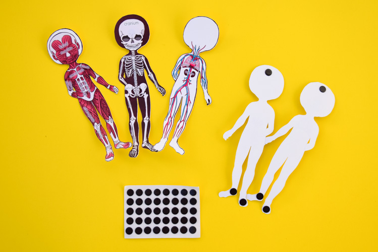 Printable paper dolls with magnets