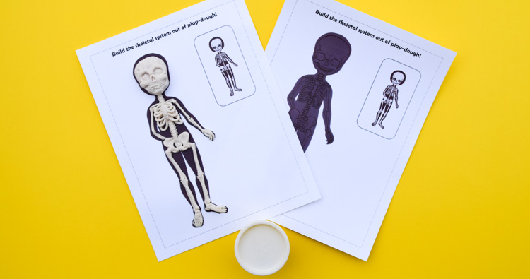Human Body Anatomy Play-Dough Mats for Kids