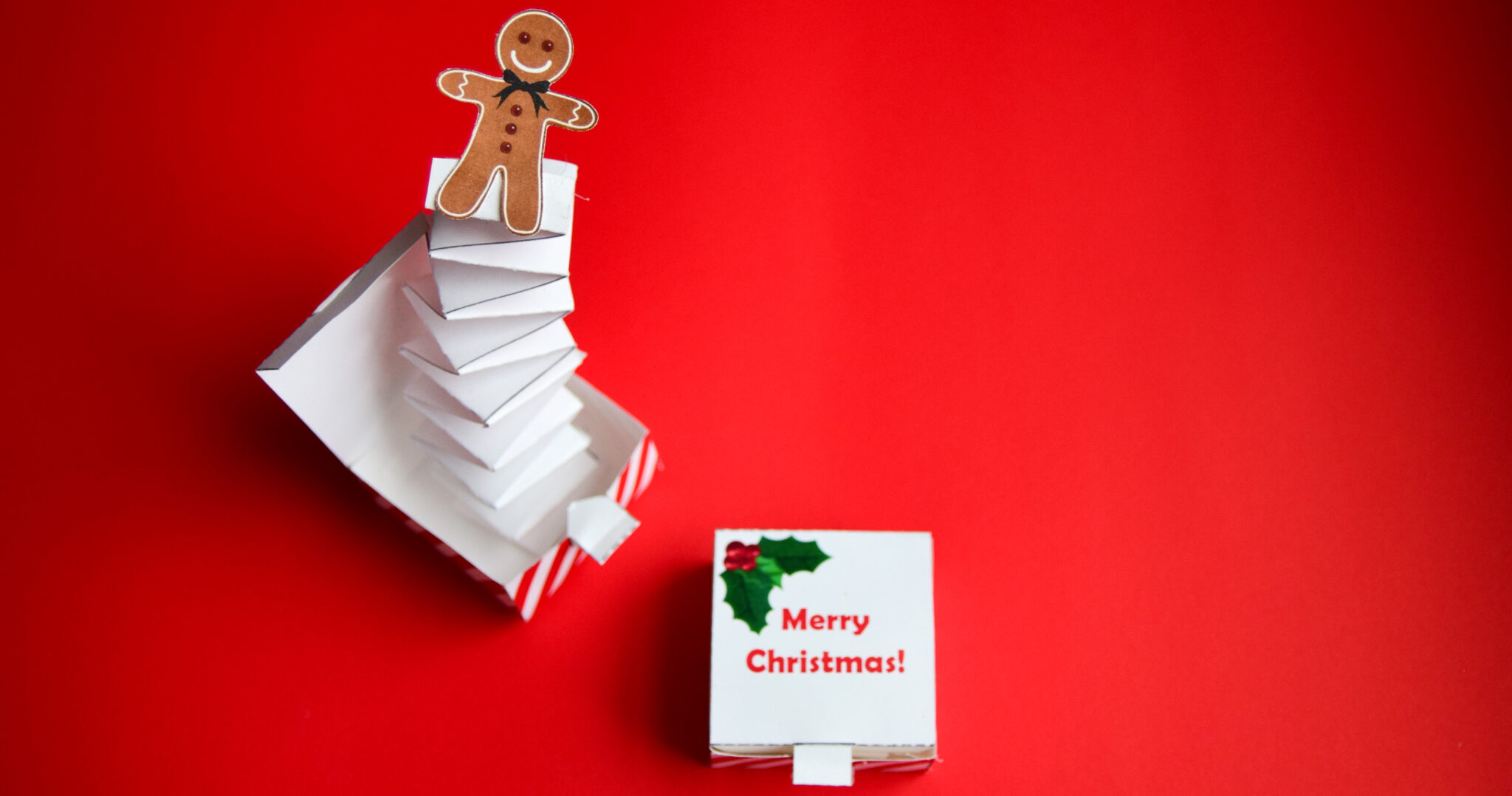 Toilet Paper Roll Gingerbread Man Craft   2179x4140
