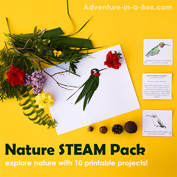 Nature STEAM for kids - printable pack