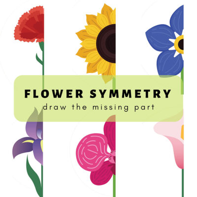 Flower Symmetry: Draw the Missing Half Cover