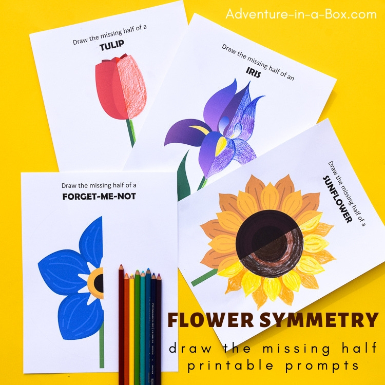 Flower Symmetry: Draw the Missing Half  Prompts for Children