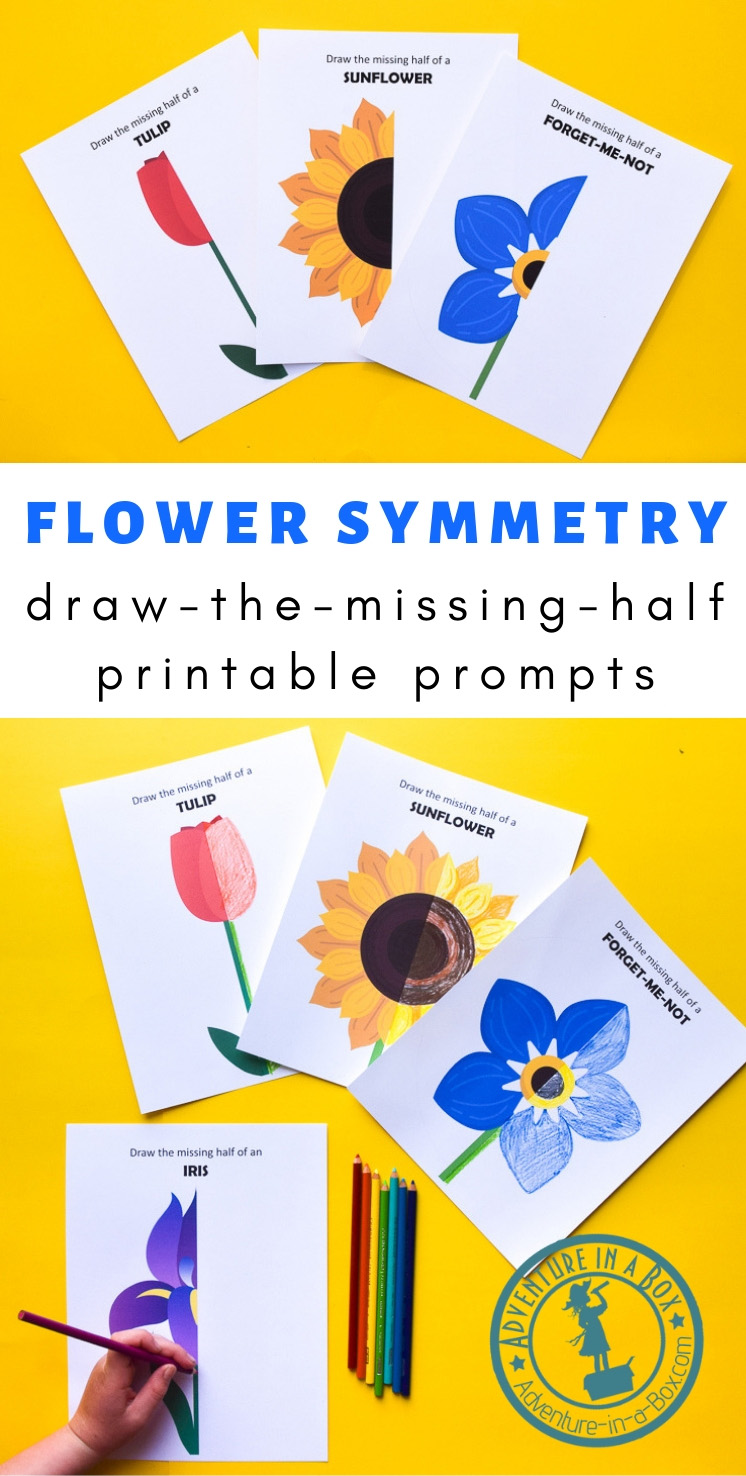 Use flower symmetry as a way to explain symmetry to children, then create beautiful symmetrical flower drawings with these printable draw-the-missing-half art prompts!