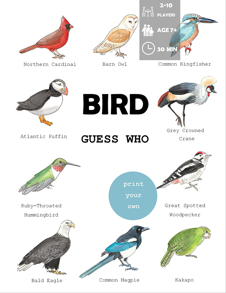 Bird Guess Who Game