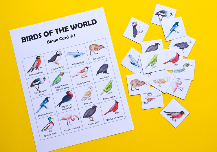 Birds of the world Bingo