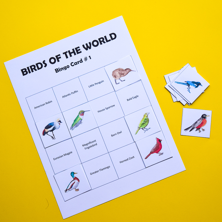Bird Bingo for advanced players