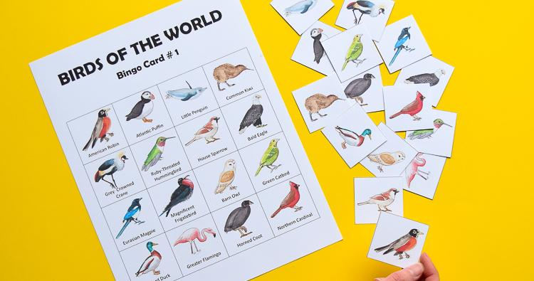 Bird Bingo Printable Game