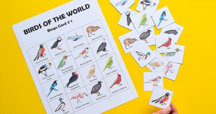Bird Bingo Printable Game