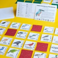 What Bird Am I? Game