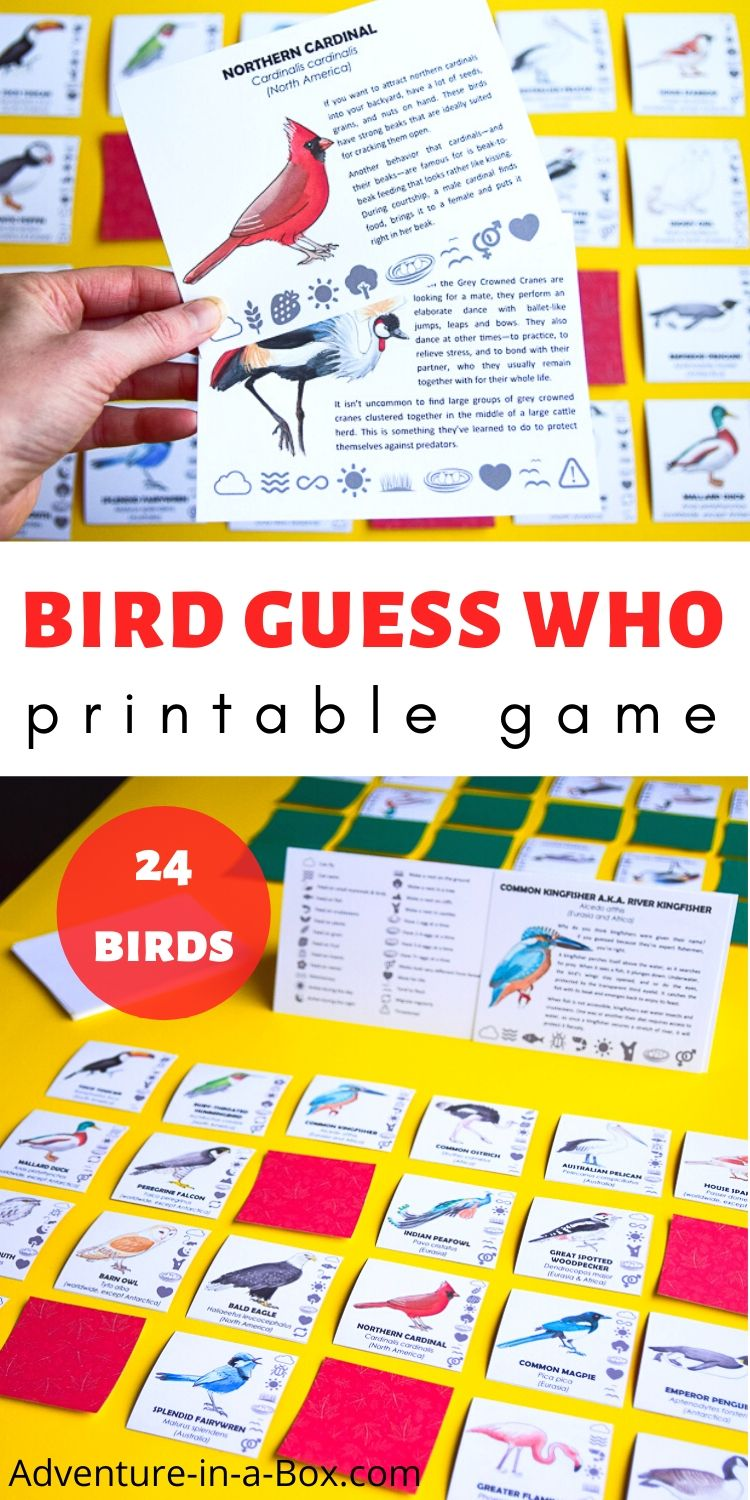 What Bird Am I Game with a Printable Design