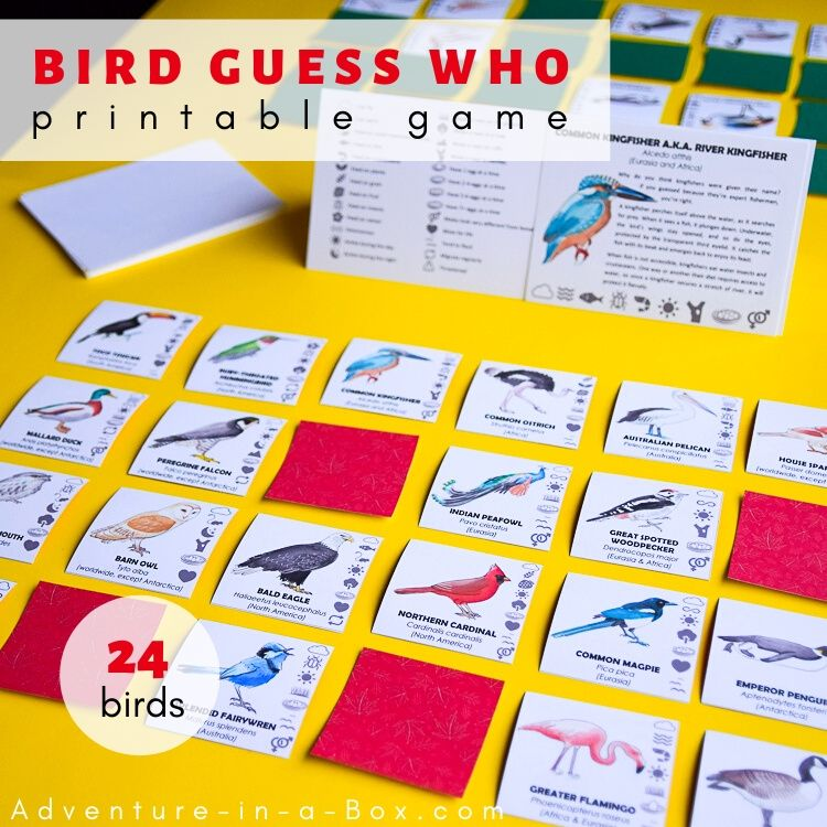 What Bird Am I Printable Game