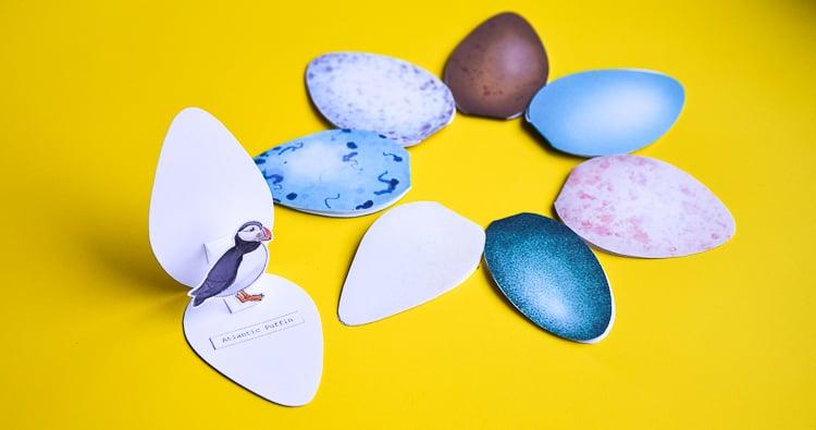 Bird Egg Cards with Templates