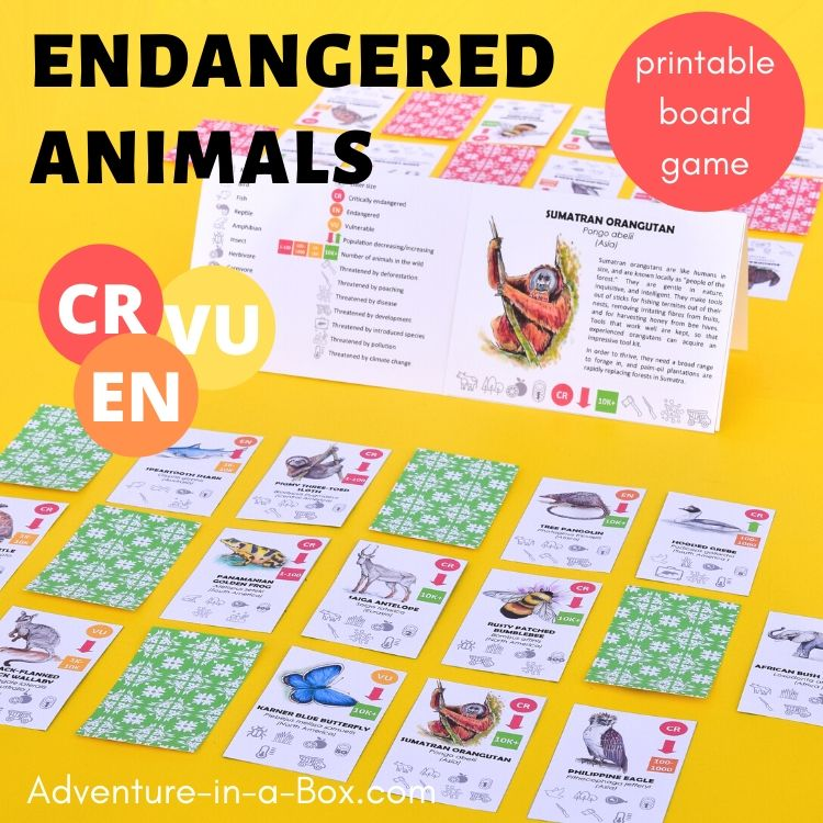 Endangered Animals Board Game