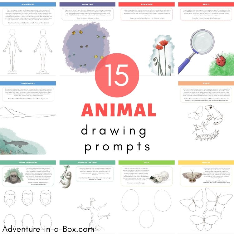 15 Animal Drawing Prompts for Kids