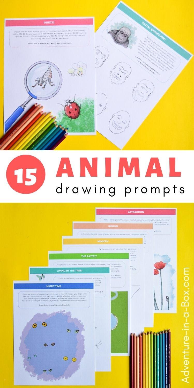 Printable Animal Drawing Prompts