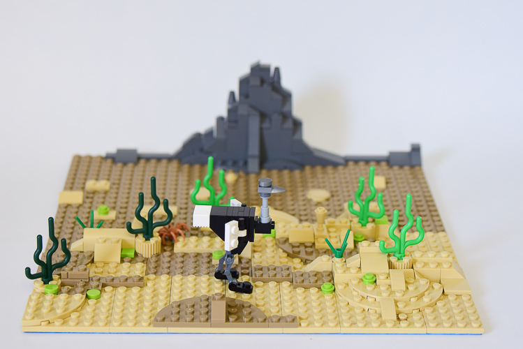 LEGO Habitat: Desert