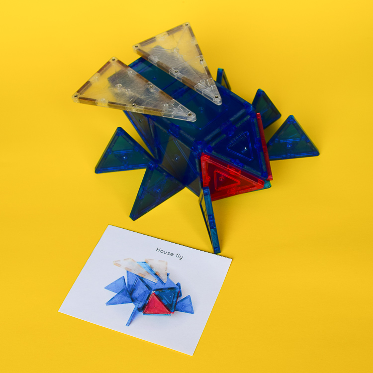 Housefly built from magna tiles