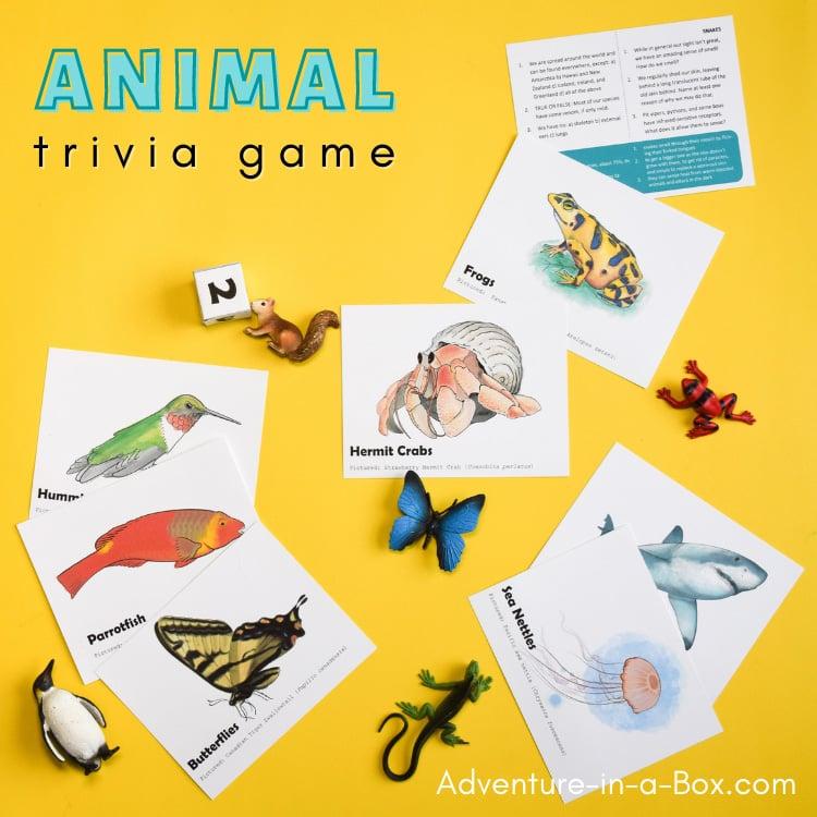 Animal trivia for kids