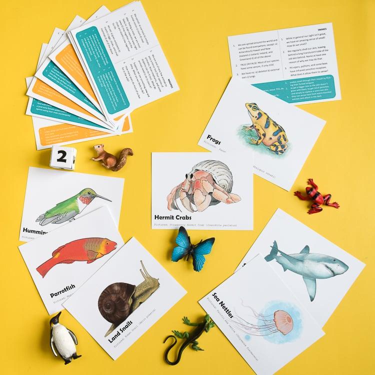 Animal Trivia Printable Game for Kids