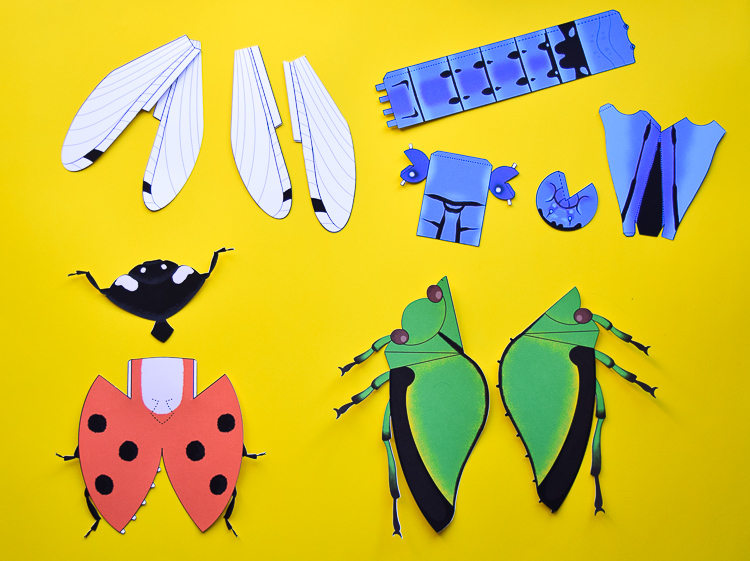 Printable Insect Templates